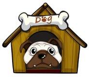 Głowa pies ilustracja wektor