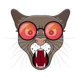 Głowa puma w modnisiów okularach przeciwsłonecznych Zwierzęcy kreskówka wektoru illustrtation ilustracji