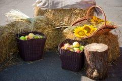 Głowy adra, jabłka i słoneczniki, Żniwo na haystack Obrazy Stock
