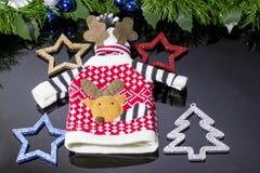 Głupi trykotowy ciepły pulower z jelenim wzorem i kapeluszem fotografia stock