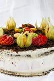 Gąbka tort z truskawkami Zdjęcia Royalty Free