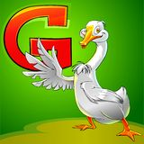 G is for goose. Cartoon alphabet. G is for goose on green background Royalty Free Stock Image