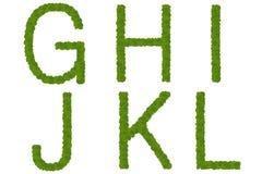 G grönt l leaves Arkivbilder