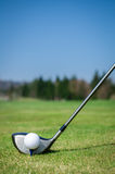 Gå i flisor en golfboll på gräsplanen med chaufförgolfklubben Gräsplan Arkivbilder