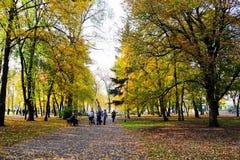 Gå i parkera av domkyrkafyrkanten i den Vilnius staden Arkivbilder