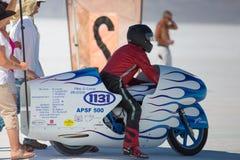 G. Lewis på hans vit och blåa toppna cykel Royaltyfria Bilder