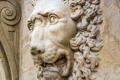Głowa huczenie lew Fotografia Royalty Free