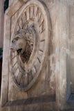 głowa lwa, s Fotografia Stock