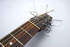 głowa na gitarze Zdjęcie Royalty Free