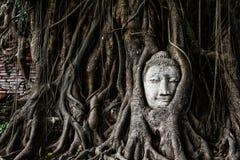 Głowa Piaskowcowy Buddha Fotografia Stock