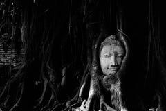 Głowa Piaskowcowy Buddha Fotografia Royalty Free