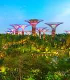 G?rten durch den Schacht, Singapur stockfotos
