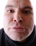 głupia twarz Obraz Stock