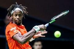 """Gaà """"l Monfils ATP世界游览网球赛 免版税库存图片"""