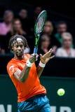 """Gaà """"l Monfils ATP-värld turnerar inomhus tennis Arkivbild"""