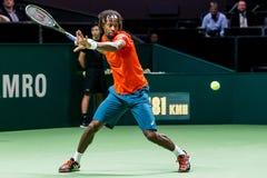"""Gaà """"l tennis dell'interno di Monfils Fotografie Stock Libere da Diritti"""
