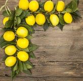 Gałąź świeże soczyste Sycylijskie cytryny na drewnianym tle Obrazy Stock
