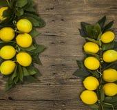 Gałąź świeże soczyste Sycylijskie cytryny na drewnianym tle Obrazy Royalty Free