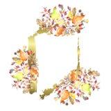 Gałąź bonkrety z różanymi biodrami owocowymi Akwareli t?a ilustracji set Ramowy rabatowy ornamentu kwadrat ilustracja wektor