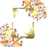 Gałąź bonkrety z różanymi biodrami owocowymi Akwareli t?a ilustracji set Ramowy rabatowy ornamentu kwadrat ilustracji