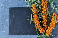 Gałąź buckthorn na betonie, czarny tło Karmowi półdupki zdjęcia stock