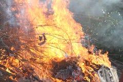 Gałąź drzewo ogień fotografia royalty free