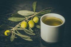 Gałąź drzewo oliwne z zielonej oliwki jagodami i nakrętką świeży o Fotografia Royalty Free