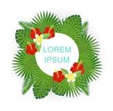 Gałąź i liście tropikalne rośliny Round kwiecista rama z przestrzenią dla teksta Zdjęcie Stock