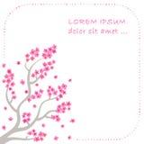 Gałąź i okwitnięcie Sakura - wektorowy tło ilustracji