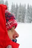 gałąź jodły śniegu drzewnego widok zima Obraz Royalty Free
