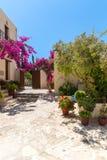 Gałąź kwiaty różowią bougainvillea krzaka, Crete, Grecja Obrazy Royalty Free