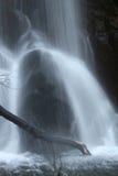 Gałąź nad wodnym strumienia ruchem Fotografia Stock