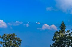 Gałąź nagi drzewo przeciw chmurnemu niebu w wiośnie Zdjęcia Stock
