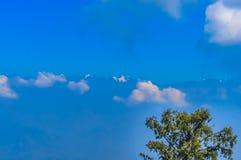 Gałąź nagi drzewo przeciw chmurnemu niebu w wiośnie Zdjęcia Royalty Free