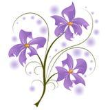 Gałąź purpurowi kwiaty Zdjęcia Royalty Free