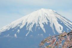 Gałąź różowy czereśniowy okwitnięcie drapuje przez kąt fotografia z rożkiem Mt Fuji w odległości, fotografia stock
