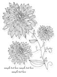 Gałąź z kwiatami Obrazy Stock