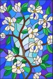 Gałąź z kwitnienie kwiatami, witrażu stylem, białymi kwiatami i liśćmi na błękitnym tle, Fotografia Stock