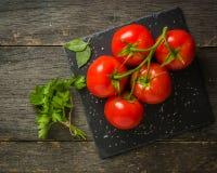 Gałąź z pięć dojrzałymi czerwonymi pomidorami Krople woda na dojrzałych owoc Zieleń bagażnik i liście Fotografia Royalty Free