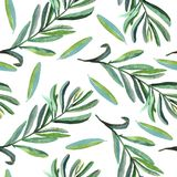 Gałąź z zielonymi liśćmi, bezszwowy deseniowy projekt na białym tle royalty ilustracja