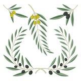 Gałązki oliwne ilustracji