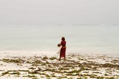 Gałęzatka rolnicy w błękitne wody z białej plaży w Zanzibar Fotografia Royalty Free
