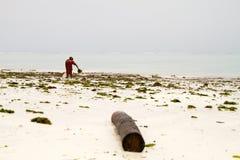 Gałęzatka rolnicy w błękitne wody z białych plaż I Obraz Stock