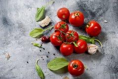 Gałęziaści pomidory i ziele na popielatym tle Obrazy Royalty Free
