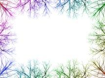 gałęziasta rama Fotografia Stock
