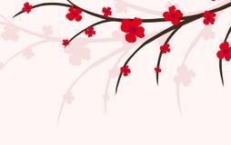 gałęziasta roślina Zdjęcie Stock
