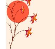 gałęziasta roślina Obrazy Royalty Free