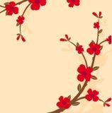 gałęziasta roślina Zdjęcia Royalty Free
