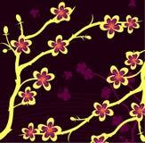 gałęziasta roślina Obraz Stock