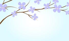 gałęziasta roślina Fotografia Stock